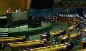 UN assembly